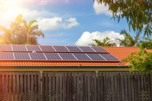 Ensure trees are trimmed away from solar panels